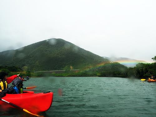 マングローブの虹